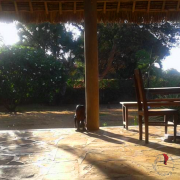 giardino-casa-africana