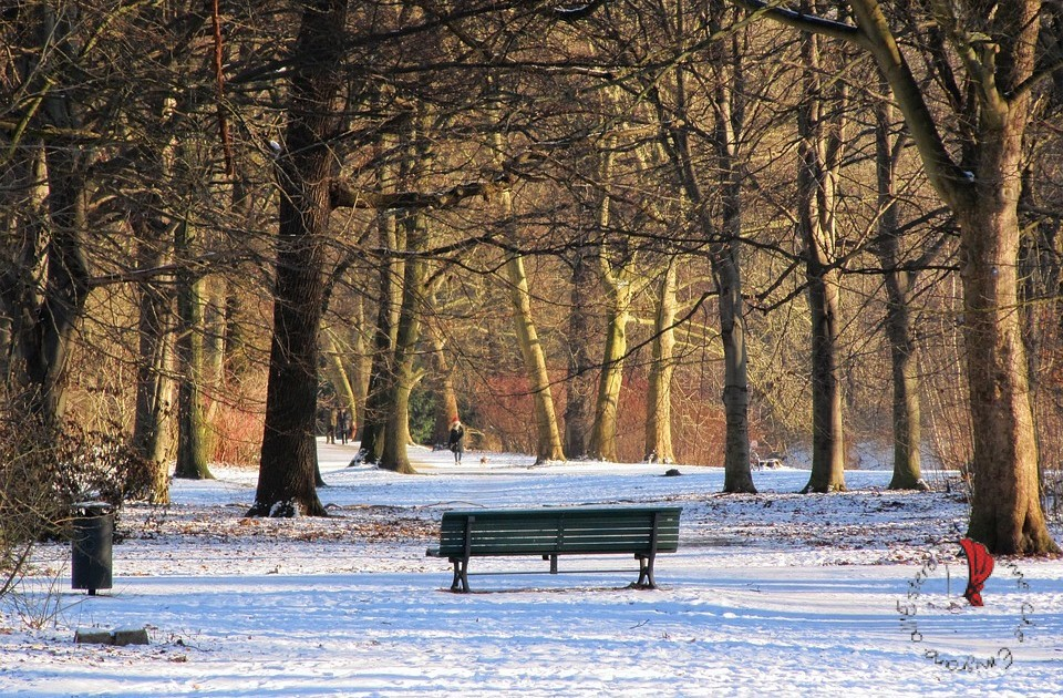self-care-passeggiata-al-parco
