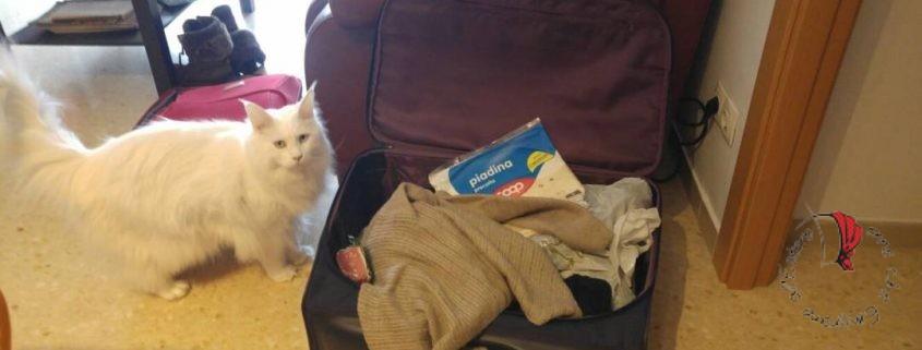 come fare la valigia
