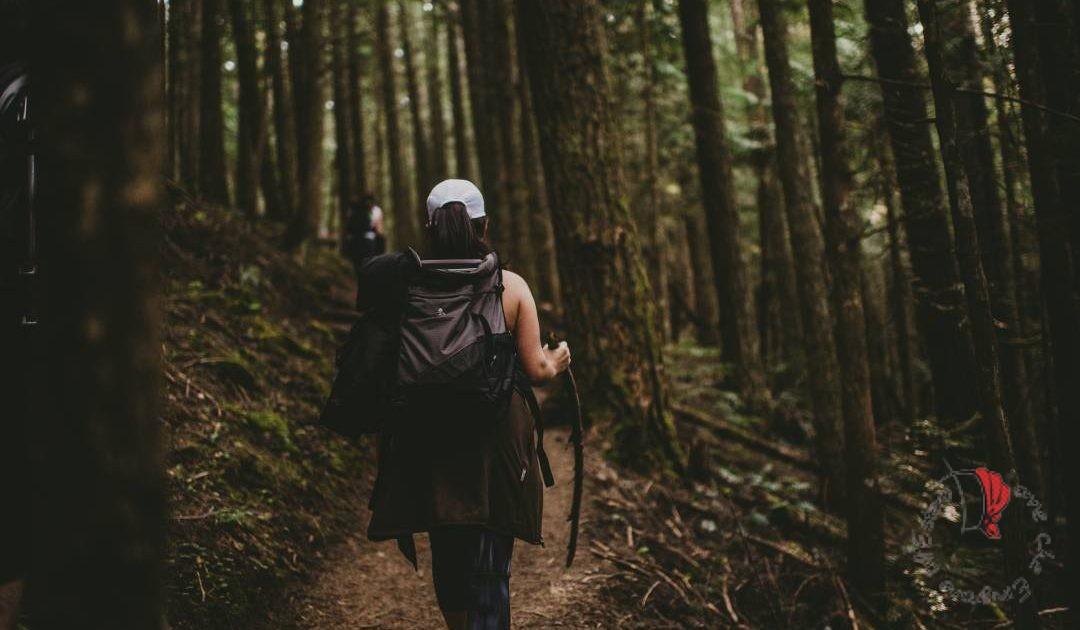 viaggiatrice solitaria con zaino in spalla nella foresta
