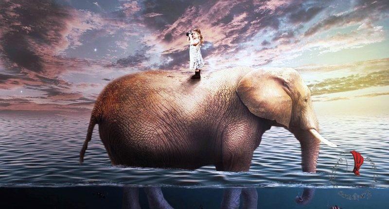 bambina-elefante-mare