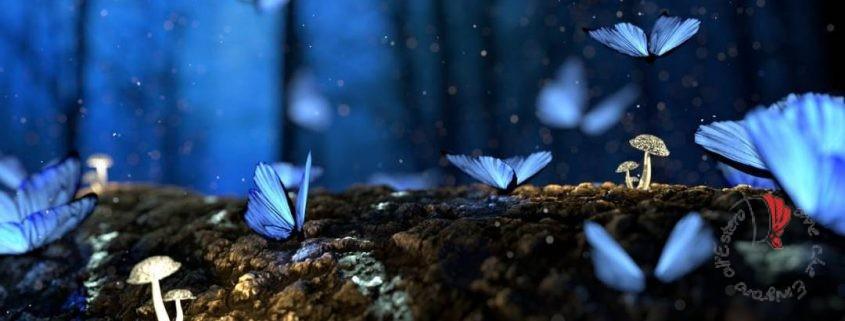 farfalle-volo-bosco