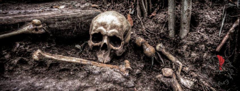 scheletro-ossa