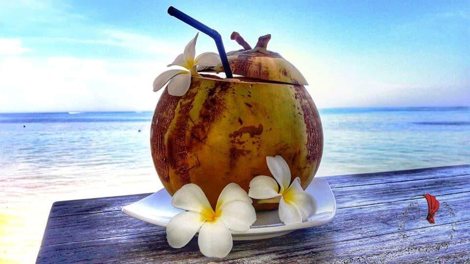 cocco-kelapa