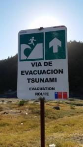 evacuazione tsunami