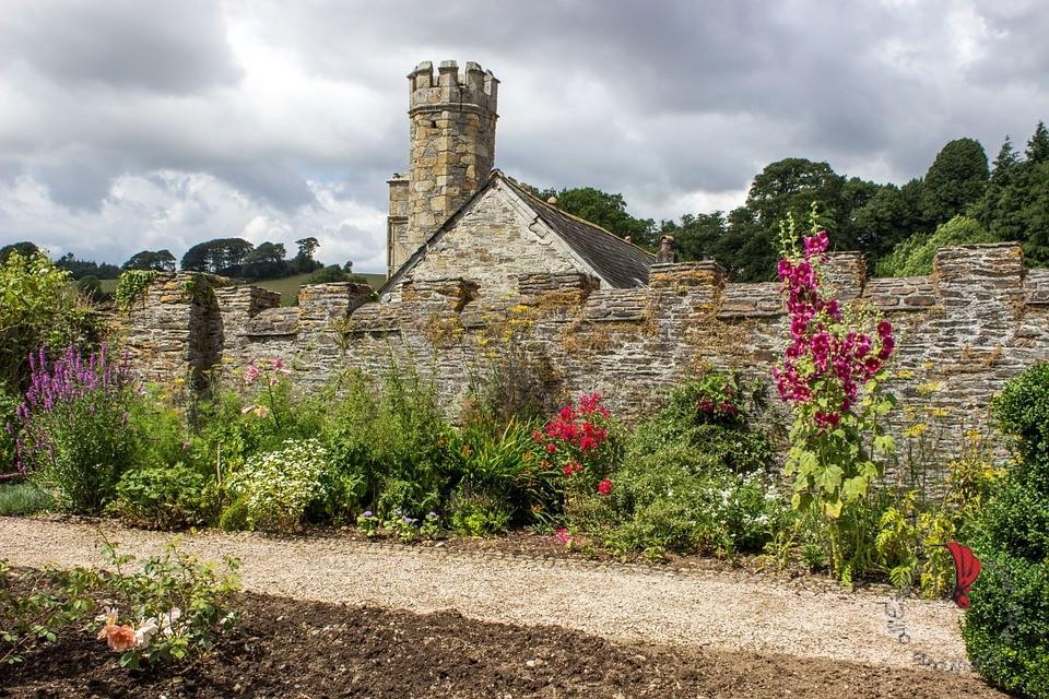 dartmoor fiori