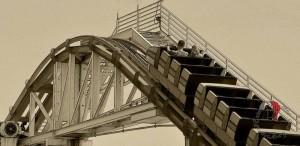 life-rolleroaster