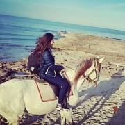 cavallo-soperta-mallorca