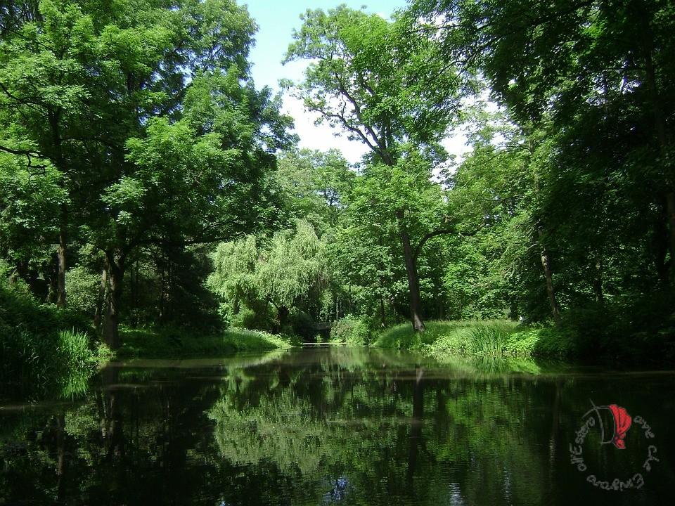 vacanze-germania-parco