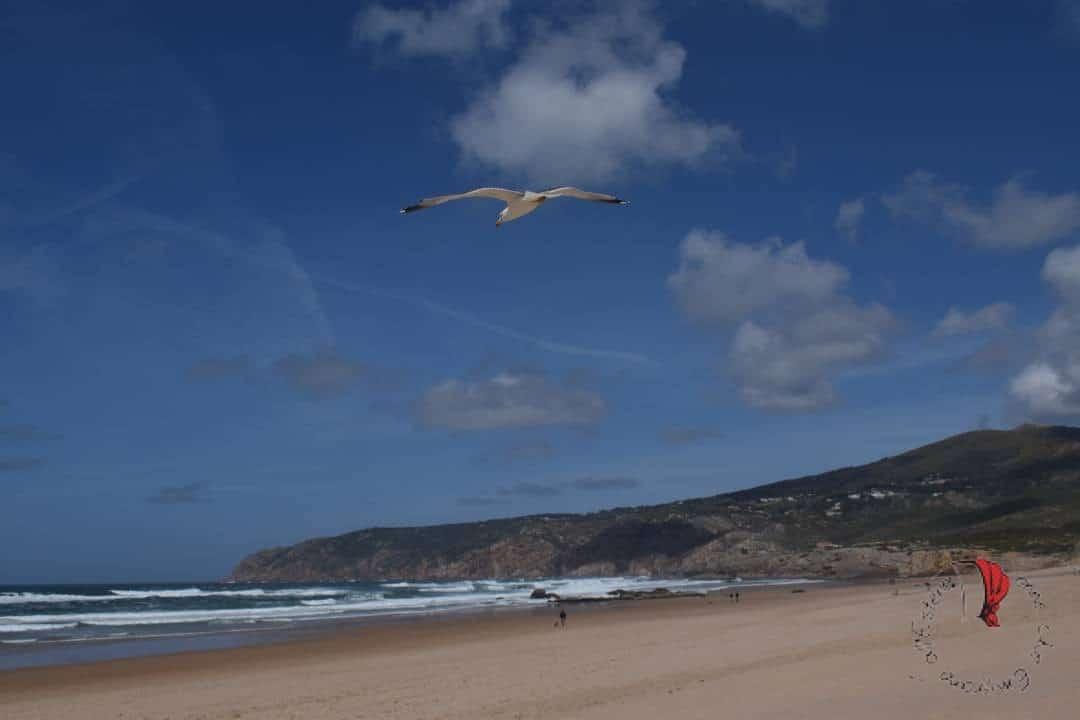 SURF-PRAIA DO GUINCHO-PORTOGALLO