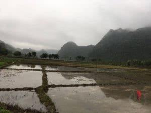 Viet Hai village, landscape, Vietnam