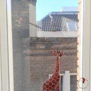 finestra-olandese-decorazioni