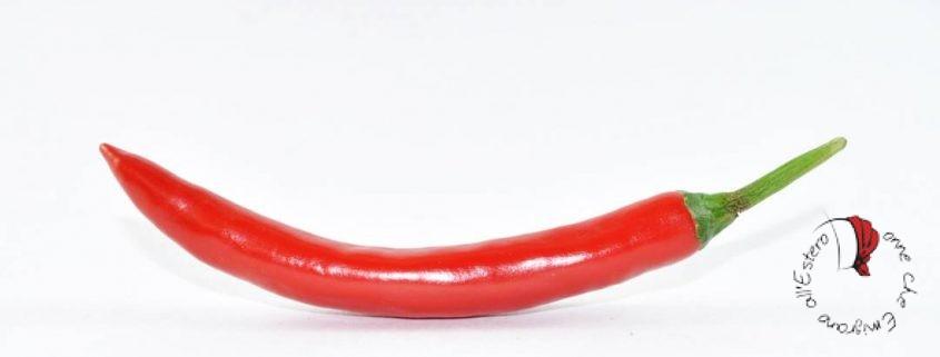 peperoncino-primo-piano