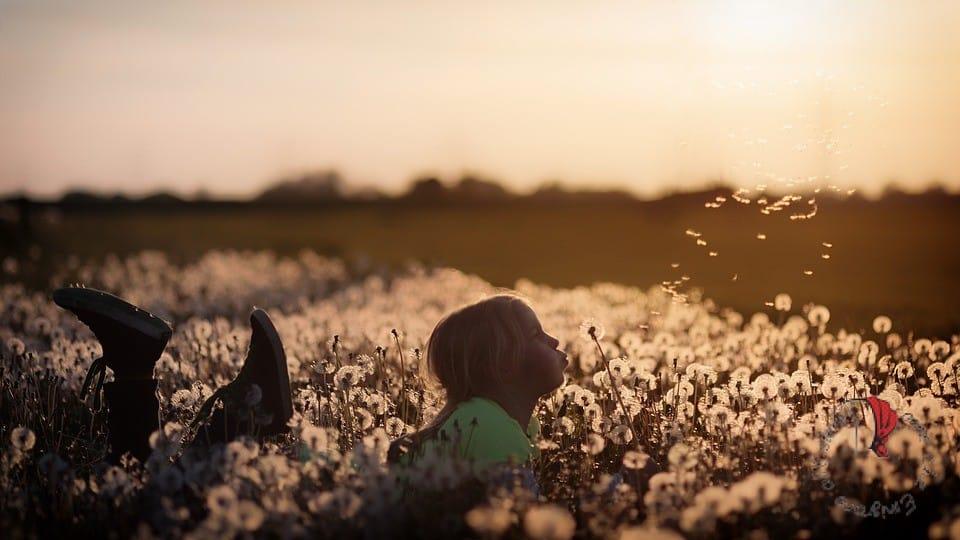 bambina-prato-fiori