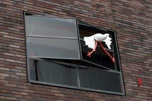 finestra-amsterdam-cicogna
