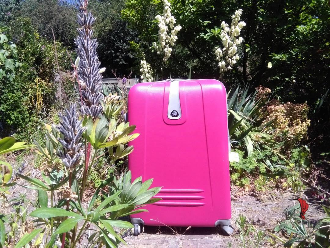 valigia-rosa-giardino