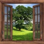 finestra-sul-giardino