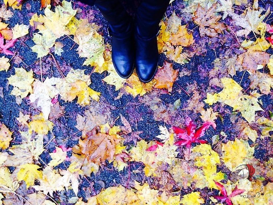 stivali-autunno-foglie