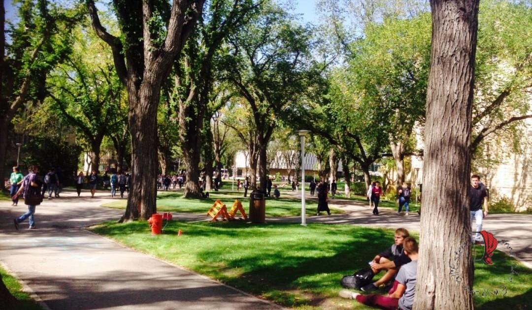 campus-universitario-giardini