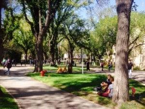 campus universita'