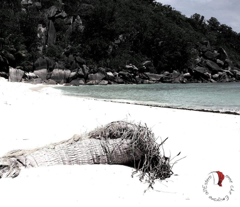 spiaggia-seychelles