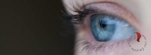 occhi-azzurri-olandesi-casa
