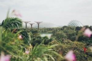 città-giardino-viaggio