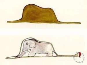 piccolo principe-elefante-cappello