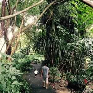 parchi-botanici