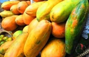 vita a Bali la papaia