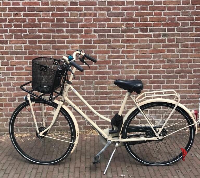 bici-donna-olanda
